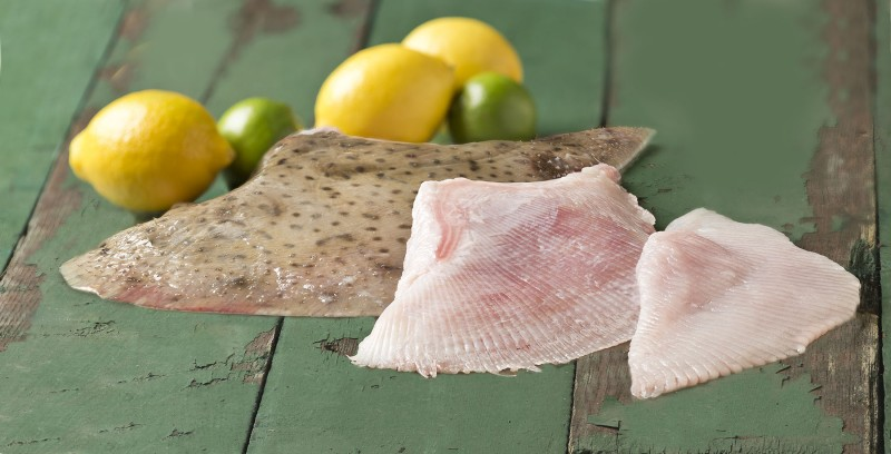 Fresh Skate Fillets